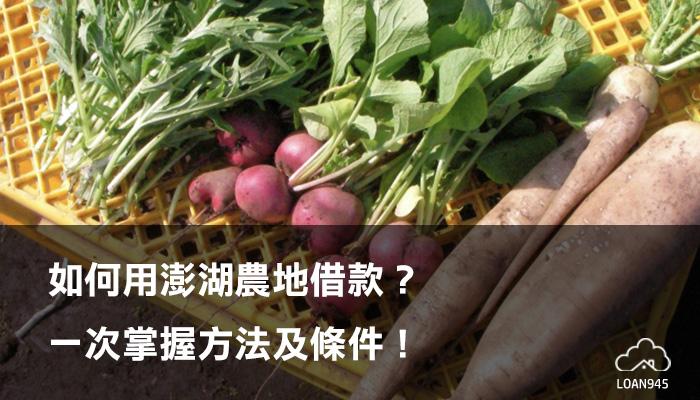 如何用澎湖農地借款?一次掌握方法及條件!【貸款就找我】